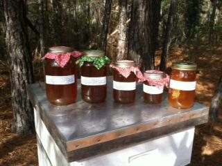 Hive&Honey